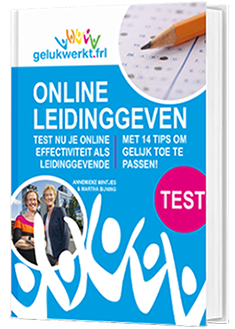 Test Online leidinggeven